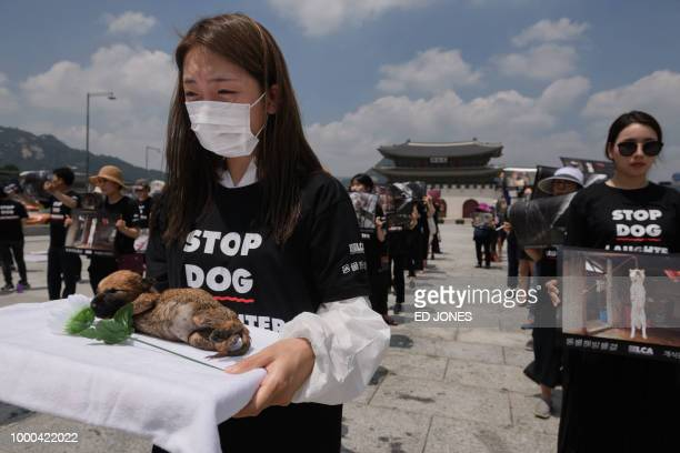 Activists from animal rights groups 'Animal Liberation Wave' and 'Last Chance for Animals' hold dead puppies retrieved from a dog meat farm as they...