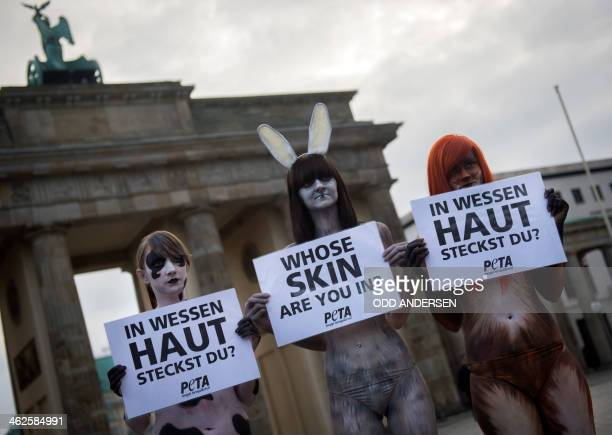 Activists from People for the Ethical Treatment of Animals protest wearing body paint that looks like animal fur at the Brandenburger gate opposite...