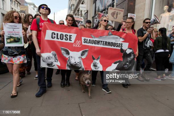 Activists hold a banner that reads Close all slaughterhouses during the march Animal rights activists marched through central London to demand the...