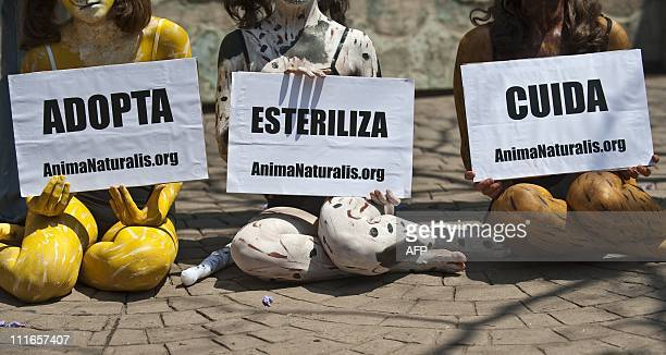 Activists of AnimaNaturalis of Mexico demonstrate in Mexico City against a government plan to electrocute some three thousand stray dogs as a...