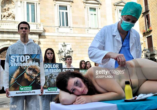 Activists of the animalrights group AnimaNaturalis hold placards reading Stop vivisection and Pain without reasons as they protest against the...