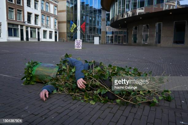 Activists wearing masks pretending to be animals killed by man's actions against the environment, during the performance in The Hague on February 27,...