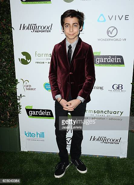 Actor Aidan Gallagher attends Farm Sanctuary's 30th anniversary gala at the Beverly Wilshire Four Seasons Hotel on November 12 2016 in Beverly Hills...