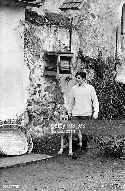 Actor Alain Delon And His Dogs In France Circa 1970