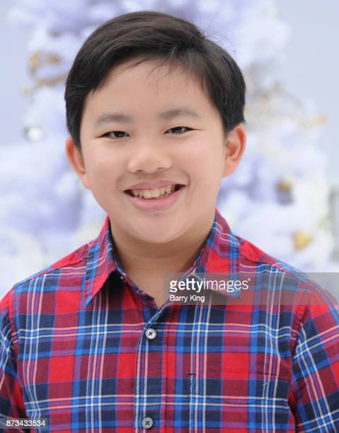 Actor Albert Tsai attends the premiere of Columbia Pictures' 'The Star' at Regency Village Theatre on November 12 2017 in Westwood California