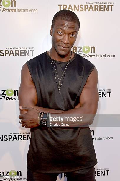 Actor Aldis Hodge attends the Amazon red carpet premiere screening for brandnew dark comedy 'Transparent' at The Theatre at Ace Hotel on September 15...