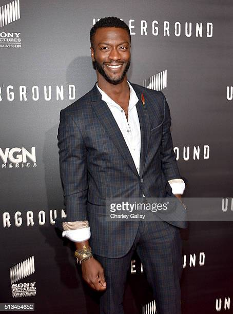 Actor Aldis Hodge attends WGN America's 'Underground' World Premiere on March 2 2016 in Los Angeles California