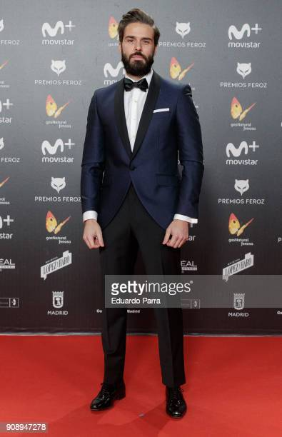 Actor Alex Barahona attends Feroz Awards 2018 at Magarinos Complex on January 22 2018 in Madrid Spain