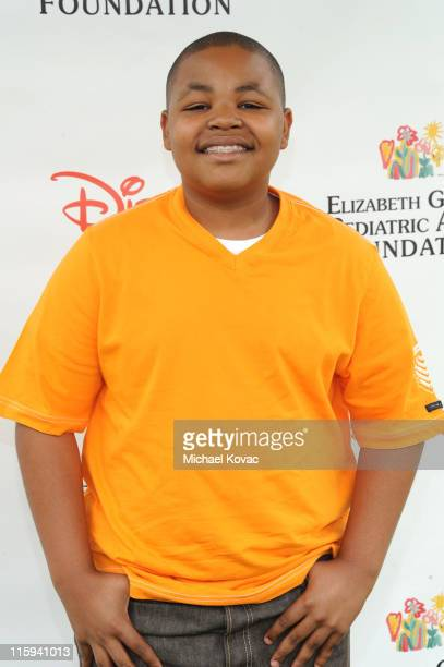 Actor Alex Christian Jones arrives at the 22nd Annual Time for Heroes Celebrity Picnic sponsored by Disney to benefit the Elizabeth Glaser Pediatric...