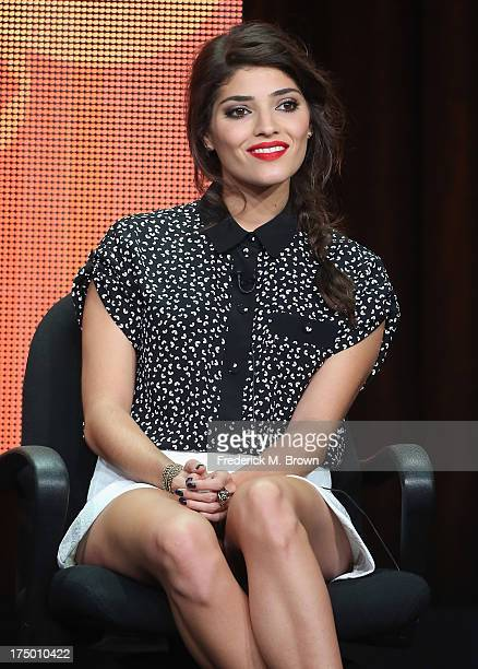 Actor Amanda Setton speaks onstage during 'The Crazy Ones' panel discussion at the CBS Showtime and The CW portion of the 2013 Summer Television...