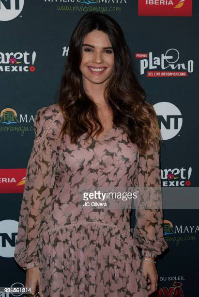 Actor Ana Gequelin attends the 5th Annual Premios PLATINO Of Iberoamerican Cinema Nominations Announcement at Hollywood Roosevelt Hotel on March 13...