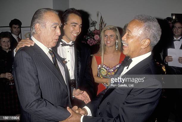 Download David Dinkins Son