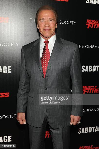 Actor Arnold Schwarzenegger attends The Cinema Society with Muscle Fitness screening of Open Road Films' Sabotage at AMC Loews Lincoln Square on...