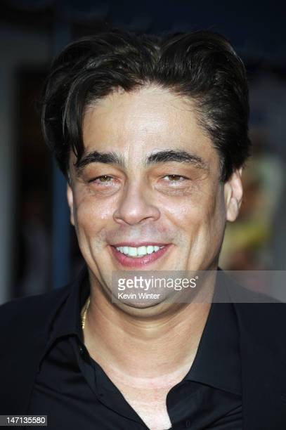 Actor Benicio Del Toro arrives at Premiere of Universal Pictures' Savages at Westwood Village on June 25 2012 in Los Angeles California