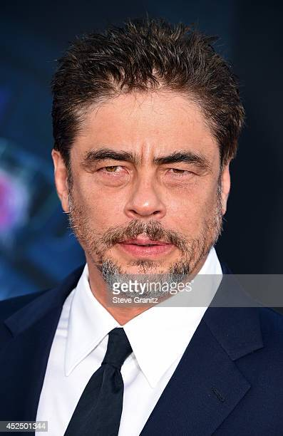 Actor Benicio Del Toro attends Marvel's 'Guardians Of The Galaxy' Los Angeles Premiere at the Dolby Theatre on July 21 2014 in Hollywood California