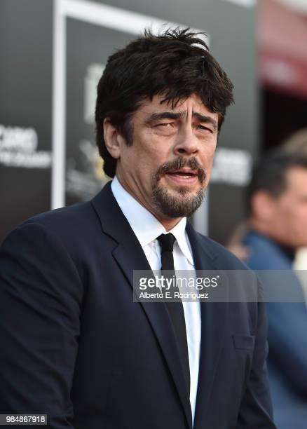 Actor Benicio del Toro attends the premiere of Columbia Pictures' Sicario Day Of The Soldado at Regency Village Theatre on June 26 2018 in Westwood...