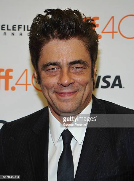 Actor Benicio Del Toro attends the Sicario premiere during the 2015 Toronto International Film Festival at Princess of Wales Theatre on September 11...