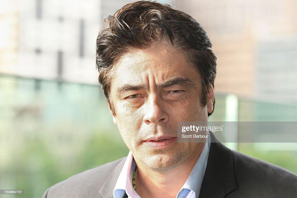 """Benicio Del Toro """"Savages"""" Melbourne Photo Call"""