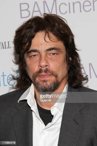 Actor Benicio del Toro the benefit screening of 'The Naked Island' at BAM Rose Cinemas on April 22 2011 in the Brooklyn borough of New York City