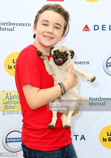 Actor Benjamin Stockham attends LA Loves Alex's Lemonade on September 12 2015 in Los Angeles California