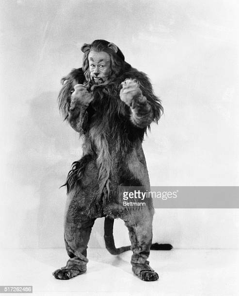 Actor Bert Lahr wears the costume for his role as the Cowardly Lion in the 1939 motion picture The Wizard of Oz
