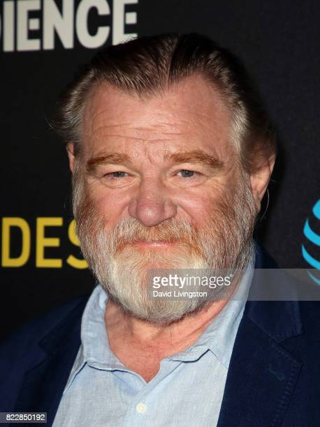Actor Brendan Gleeson attends a screening of ATT Audience Network's Mr Mercedes at The Beverly Hilton Hotel on July 25 2017 in Beverly Hills...