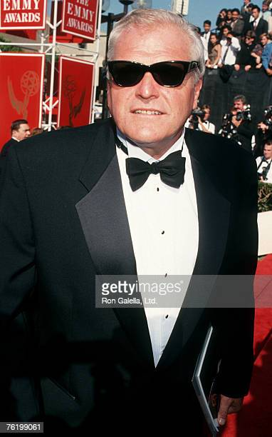 Actor Brian Dennehy attending 45th Annual Primetime Emmy Awards on September 19, 1993 at Pasadna Civic Auditorium in Pasadena, California.