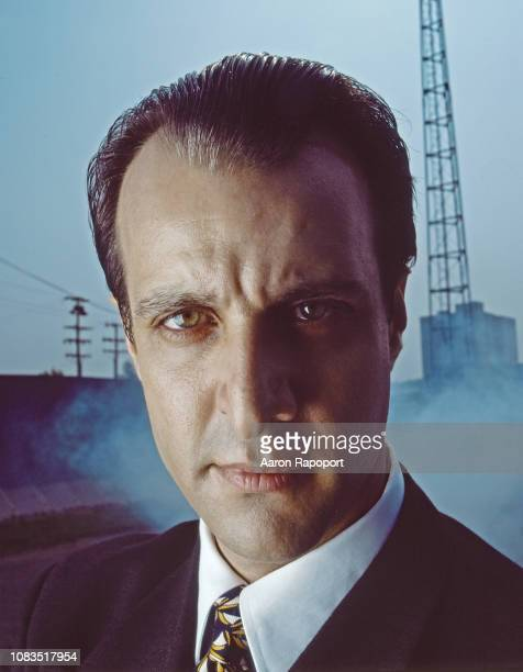 Actor Bronson Pinchot poses for a portrait in July 1995 in Bangor Maine