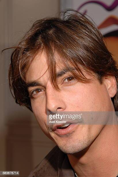 Actor Bryan Dattilo arrives at the Los Angeles premiere of the movie 'Happily N'Ever After' at Mann's Festival Theater in Westwood