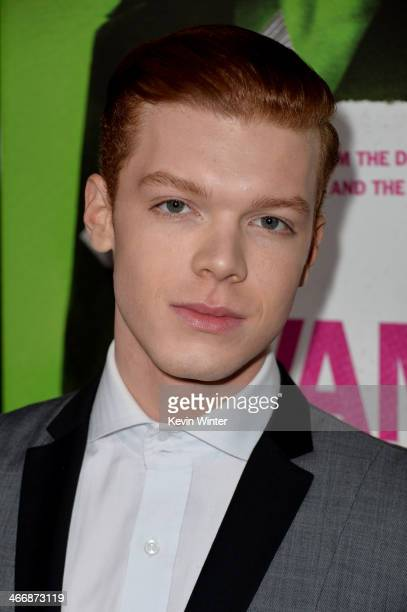 Actor Cameron Monaghan attends the premiere of The Weinstein Company's 'Vampire Academy' at Regal Cinemas LA Live on February 4 2014 in Los Angeles...