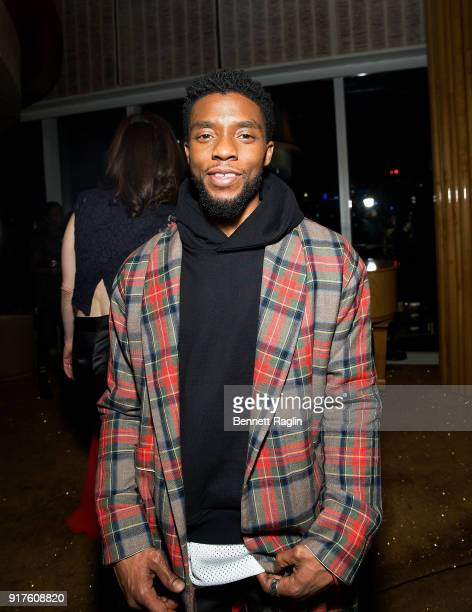 Actor Chadwick Boseman attends the Danai x One x Love Our Girls celebration at The Top of The Standard on February 12 2018 in New York City