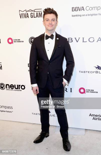 Actor Chris Colfer attends the 25th Annual Elton John AIDS Foundation's Academy Awards Viewing Party at The City of West Hollywood Park on February...
