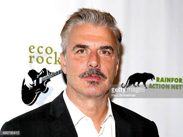 Actor Chris Noth attends the 2014 Rainforest Action Network fundraiser at The Cutting Room on June 16 2014 in New York City