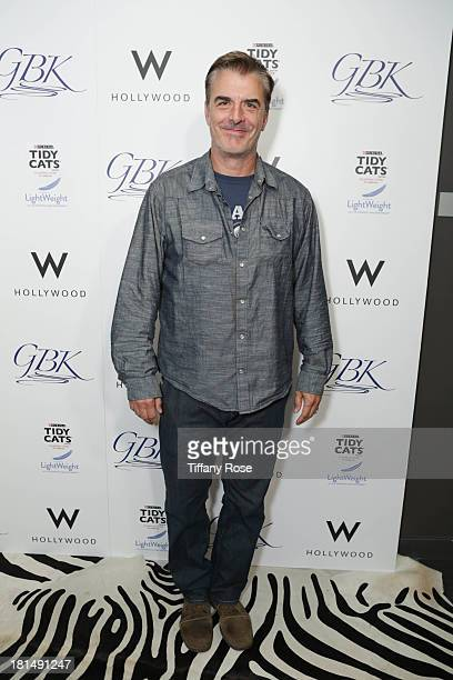 Actor Chris Noth attends the GBK Productions Luxury Lounge during Emmy's Weekend on September 21 2013 in Hollywood California