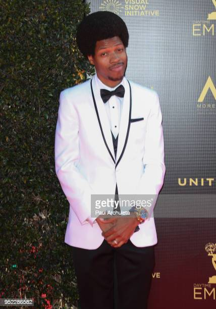 Actor / Comedian Mike E Winfield attends the 45th Annual Daytime Creative Arts Emmy Awards at the Pasadena Civic Auditorium on April 27 2018 in...