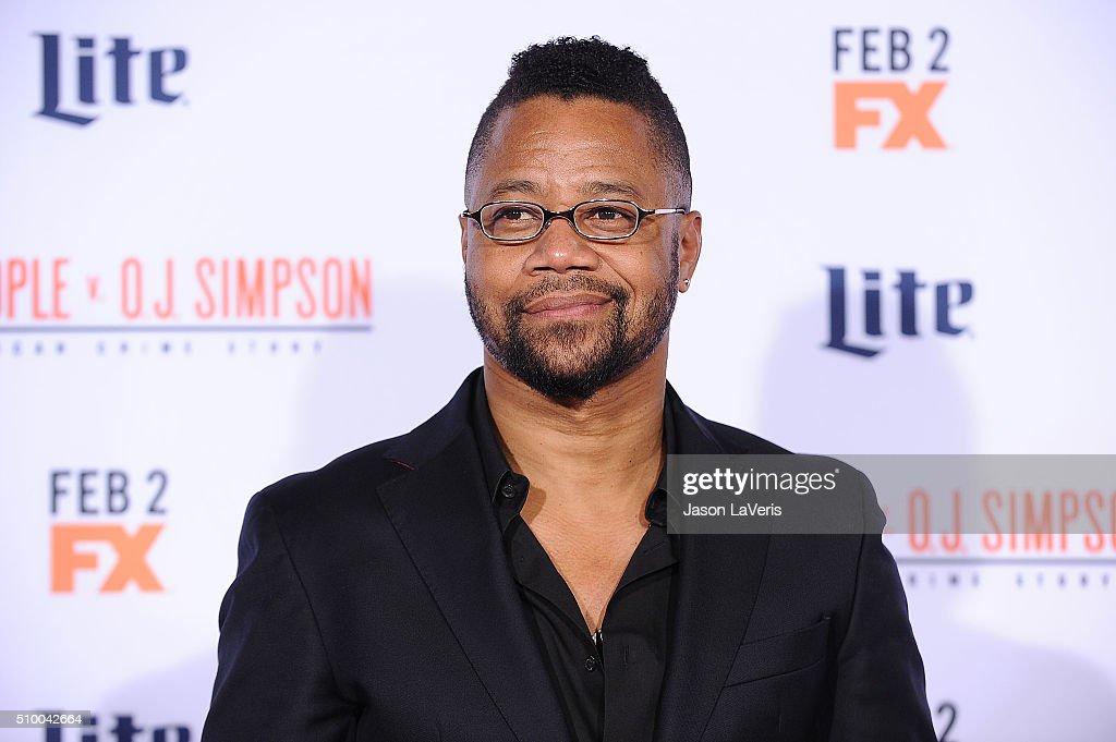 "Premiere Of ""FX's ""American Crime Story - The People V. O.J. Simpson"" - Arrivals : Fotografía de noticias"