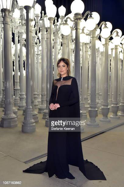 Actor Dakota Johnson wearing Gucci attends 2018 LACMA Art Film Gala honoring Catherine Opie and Guillermo del Toro presented by Gucci at LACMA on...
