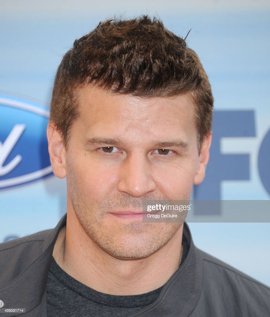 Actor David Boreanaz arrives at the 2014 FOX Fall Eco-Casino Party at The Bungalow on September 8, 2014 in Santa Monica, California.