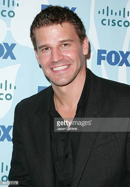 Actor David Boreanaz attends the Fox fall eco-casino party at The London on September 8, 2008 in West Hollywood, California.