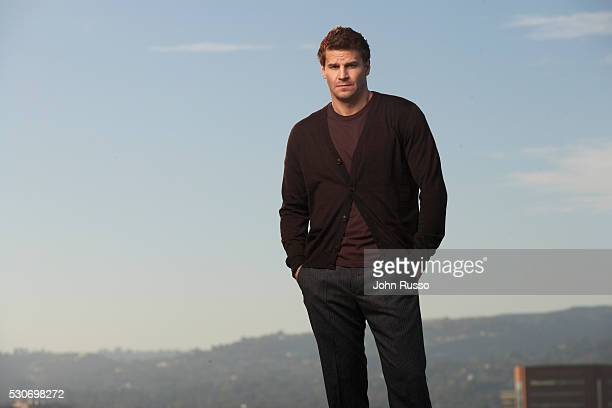 Actor David Boreanaz is photographed in 2008 in Los Angeles California