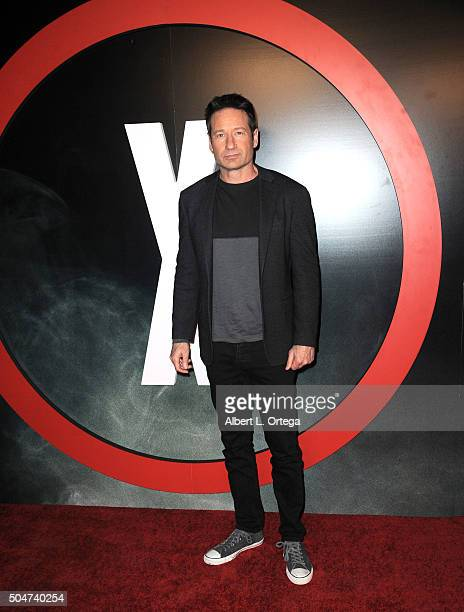 Actor David Duchovny arrives for the Premiere Of Fox's The XFiles held at California Science Center on January 12 2016 in Los Angeles California
