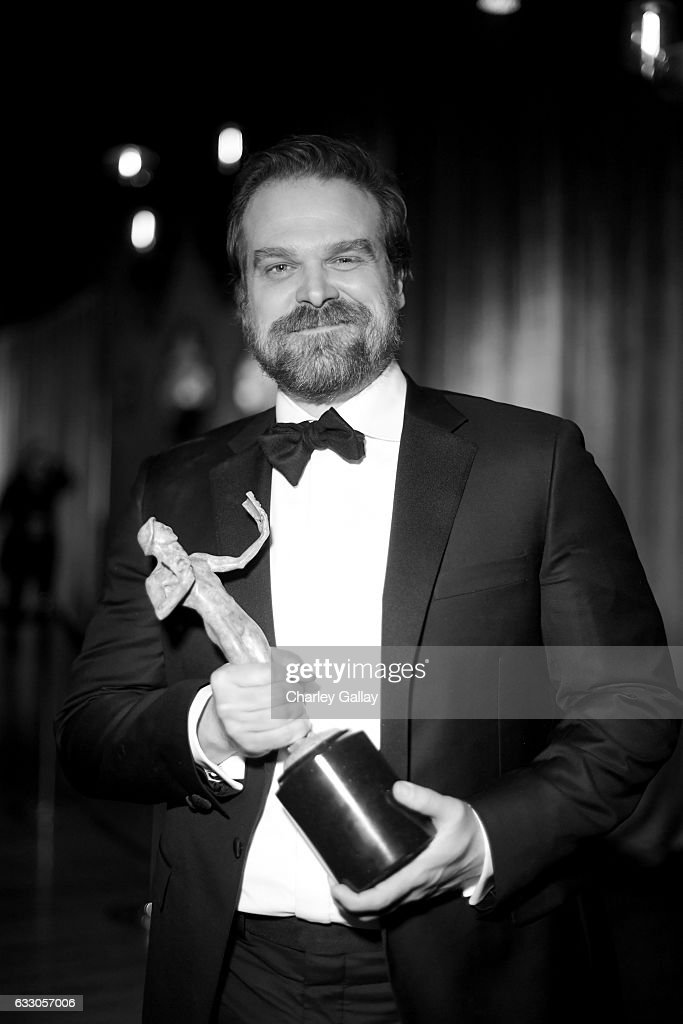 Actor David Harbour attends The 23rd Annual Screen Actors Guild Awards at The Shrine Auditorium on January 29, 2017 in Los Angeles, California. 26592_010