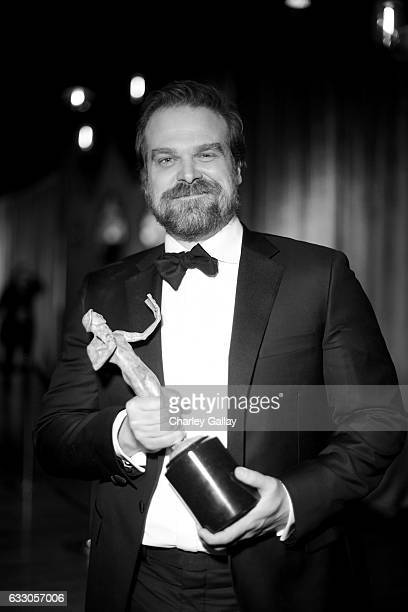 Actor David Harbour attends The 23rd Annual Screen Actors Guild Awards at The Shrine Auditorium on January 29 2017 in Los Angeles California 26592_010
