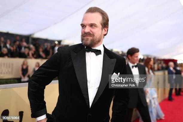 Actor David Harbour attends the 24th Annual Screen Actors Guild Awards at The Shrine Auditorium on January 21, 2018 in Los Angeles, California....