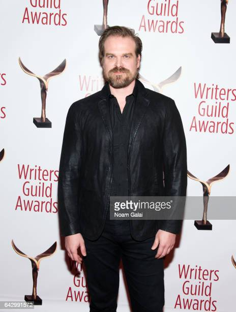 Actor David Harbour attends the 69th Annual Writers Guild Awards New York ceremony at Edison Ballroom on February 19 2017 in New York City