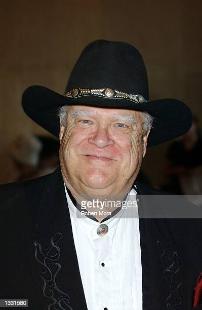 Actor David Huddleston attends the 20th Annual Golden Boot Awards at the Beverly Hilton Hotel on August 10 2002 in Beverly Hills California