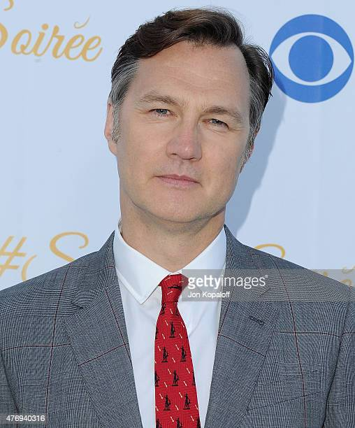 Actor David Morrissey arrives at CBS Television Studios 3rd Annual Summer Soiree Party at The London Hotel on May 18 2015 in West Hollywood California