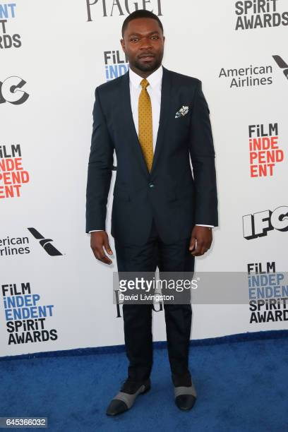 Actor David Oyelowo attends the 2017 Film Independent Spirit Awards on February 25 2017 in Santa Monica California