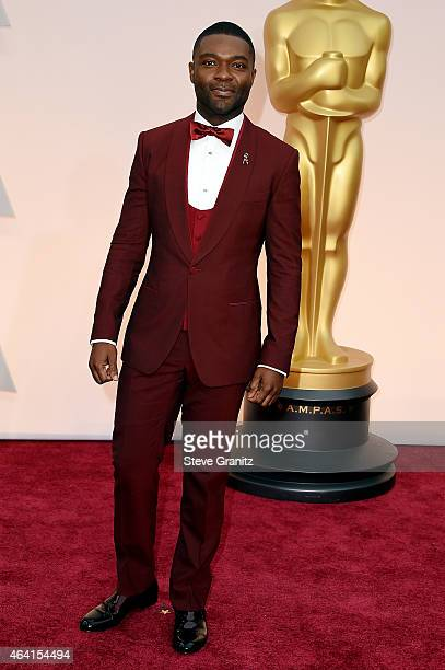 Actor David Oyelowo attends the 87th Annual Academy Awards at Hollywood Highland Center on February 22 2015 in Hollywood California