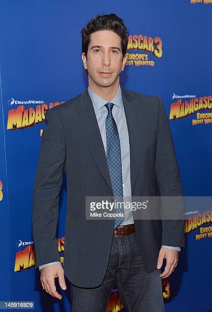 Actor David Schwimmer attend the Madagascar 3 Europe's Most Wanted New York Premier at Ziegfeld Theatre on June 7 2012 in New York City